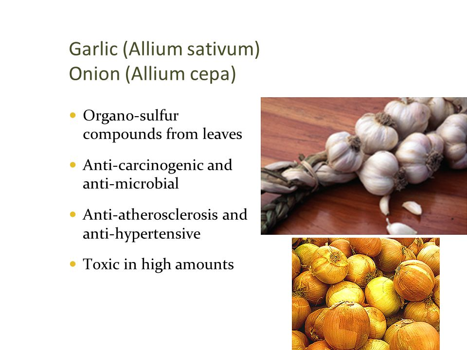 Garlic (Allium sativum) Onion (Allium cepa)  Organo-sulfur compounds from leaves  Anti-carcinogenic and anti-microbial  Anti-atherosclerosis and an