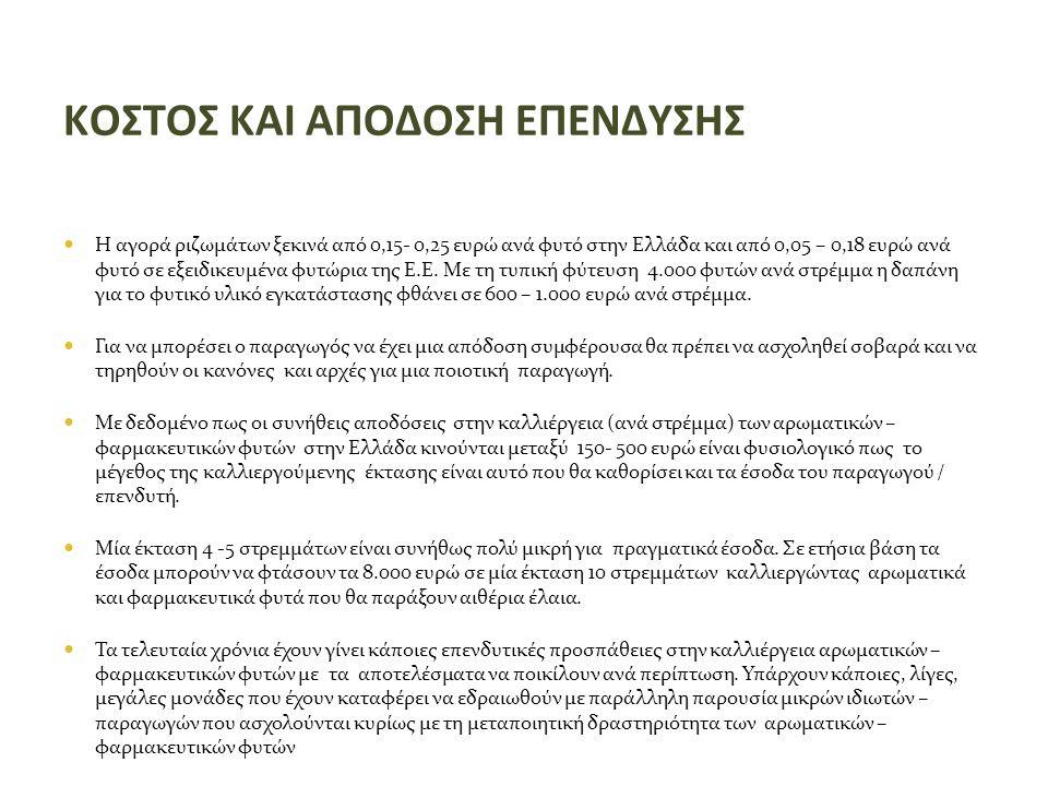 ΚΟΣΤΟΣ ΚΑΙ ΑΠΟΔΟΣΗ ΕΠΕΝΔΥΣΗΣ  Η αγορά ριζωμάτων ξεκινά από 0,15- 0,25 ευρώ ανά φυτό στην Ελλάδα και από 0,05 – 0,18 ευρώ ανά φυτό σε εξειδικευμένα φυτώρια της Ε.Ε.