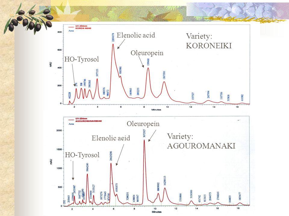 Oleuropein Elenolic acid Variety: KORONEIKI HO-Tyrosol Oleuropein Variety: AGOUROMANAKI Elenolic acid HO-Tyrosol