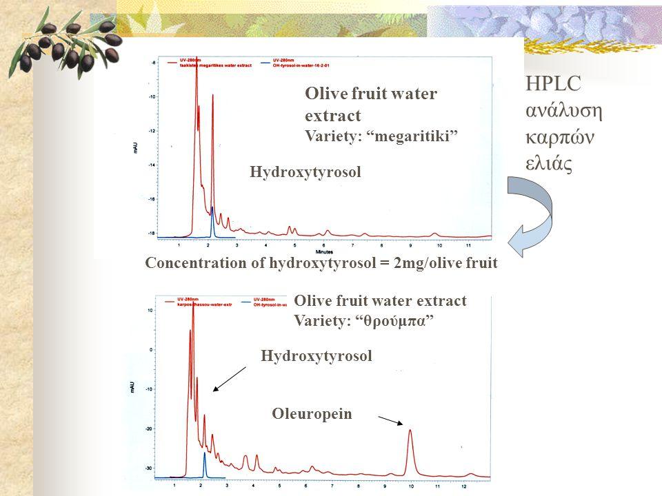 Olive fruit water extract Variety: megaritiki Hydroxytyrosol Concentration of hydroxytyrosol = 2mg/olive fruit Olive fruit water extract Variety: θρούμπα Hydroxytyrosol Oleuropein HPLC ανάλυση καρπών ελιάς