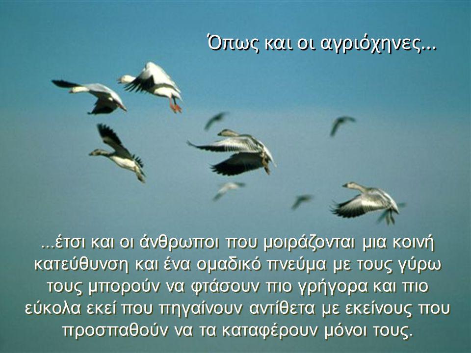 ...έτσι και οι άνθρωποι που μοιράζονται μια κοινή κατεύθυνση και ένα ομαδικό πνεύμα με τους γύρω τους μπορούν να φτάσουν πιο γρήγορα και πιο εύκολα εκ