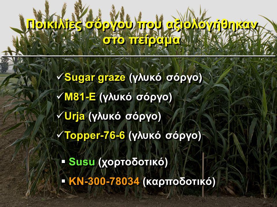 Ποικιλίες σόργου που αξιολογήθηκαν στο πείραμα  Susu (χορτοδοτικό)  KN-300-78034 (καρποδοτικό)  Susu (χορτοδοτικό)  KN-300-78034 (καρποδοτικό)  S
