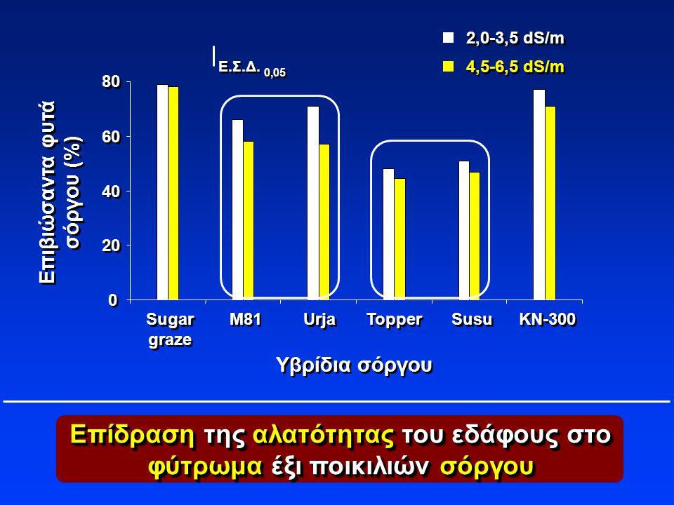 Επίδραση της αλατότητας του εδάφους στο φύτρωμα έξι ποικιλιών σόργου Υβρίδια σόργου Επιβιώσαντα φυτά σόργου (%) Επιβιώσαντα φυτά σόργου (%) M81 Sugar