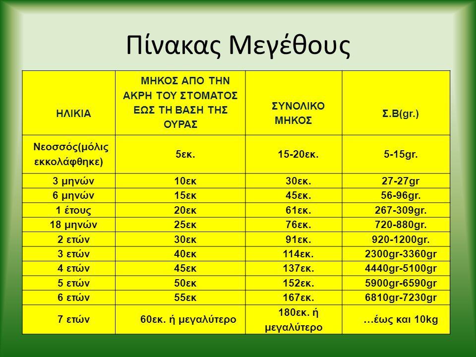Πίνακας Μεγέθους ΗΛΙΚΙΑ ΜΗΚΟΣ ΑΠΟ ΤΗΝ ΑΚΡΗ ΤΟΥ ΣΤΟΜΑΤΟΣ ΕΩΣ ΤΗ ΒΑΣΗ ΤΗΣ ΟΥΡΑΣ ΣΥΝΟΛΙΚΟ ΜΗΚΟΣ Σ.Β(gr.) Νεοσσός(μόλις εκκολάφθηκε) 5εκ.15-20εκ.5-15gr. 3
