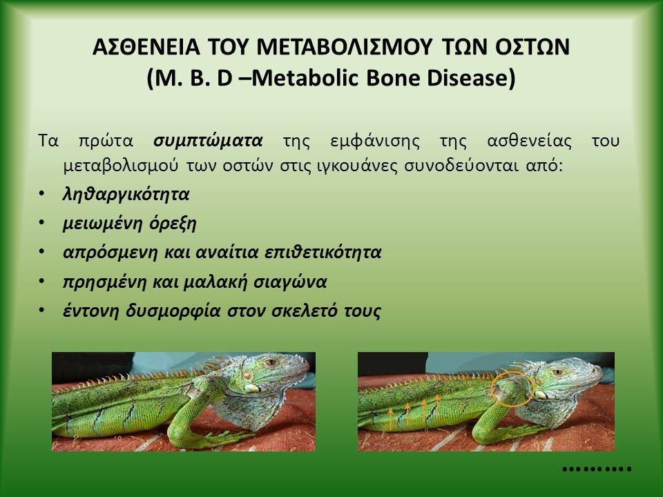 ΑΣΘΕΝΕΙΑ ΤΟΥ ΜΕΤΑΒΟΛΙΣΜΟΥ ΤΩΝ ΟΣΤΩΝ (M. B. D –Metabolic Bone Disease) Τα πρώτα συμπτώματα της εμφάνισης της ασθενείας του μεταβολισμού των οστών στις