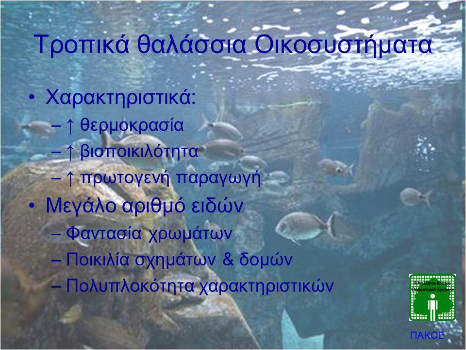 Τροπικά θαλάσσια Οικοσυστήματα •Χαρακτηριστικά: –↑ θερμοκρασία –↑ βιοποικιλότητα –↑ πρωτογενή παραγωγή •Μεγάλο αριθμό ειδών –Φαντασία χρωμάτων –Ποικιλ