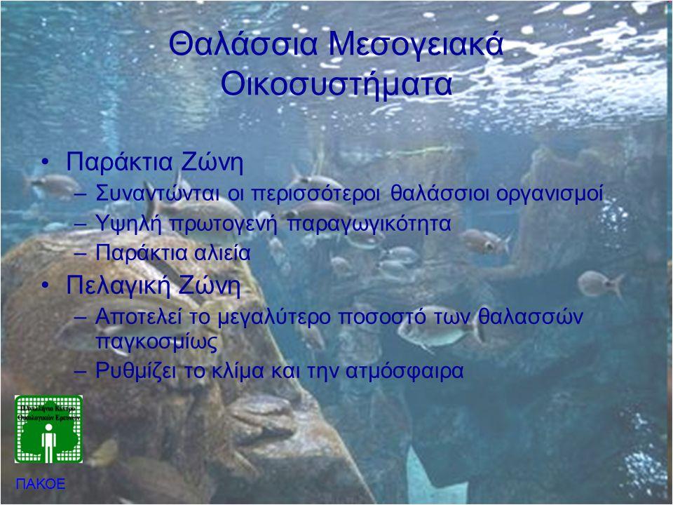 Θαλάσσια Μεσογειακά Οικοσυστήματα •Παράκτια Ζώνη –Συναντώνται οι περισσότεροι θαλάσσιοι οργανισμοί –Υψηλή πρωτογενή παραγωγικότητα –Παράκτια αλιεία •Π