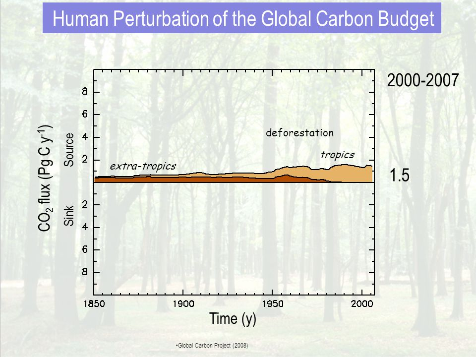 deforestation fossil fuel emissions 7.5 1.5 2000-2007 CO 2 flux (Pg C y -1 ) Sink Source Time (y) Human Perturbation of the Global Carbon Budget •Global Carbon Project (2008)