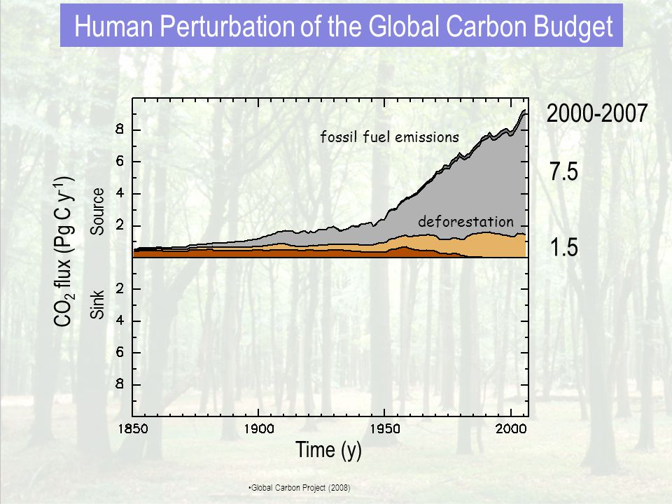 LULUCFSummary Net GHG emissions / removals (in kt CO2 eq) from the Land Use, Land Use Change and Forestry sector by category (bars) and total (line) for the period 1990 – 2004 • The magnitude of the LULUCF sink increased by 69% from 1990 to 2004 • Fluctuations in GHG removals are mainly attributed to fluctuation in areas of Forest Land burnt by wildfires each year • Grassland category appears as a small source of CH 4 and N 2 O due to emissions during wildfires