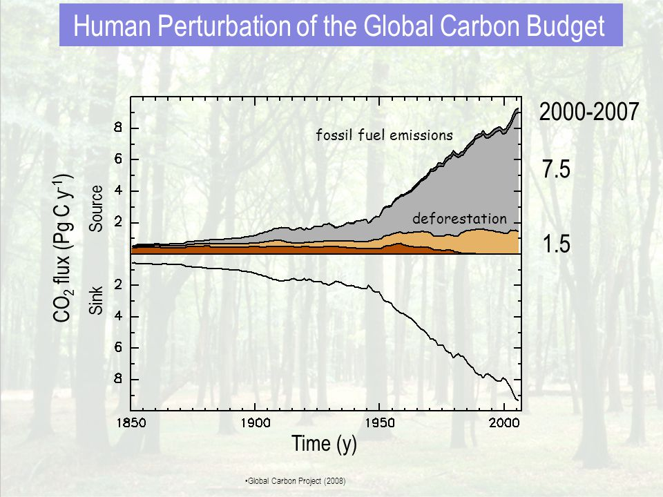fossil fuel emissions deforestation 7.5 1.5 4.2 2000-2007 CO 2 flux (Pg C y -1 ) Sink Source Time (y) atmospheric CO 2 Human Perturbation of the Global Carbon Budget •Global Carbon Project (2008)