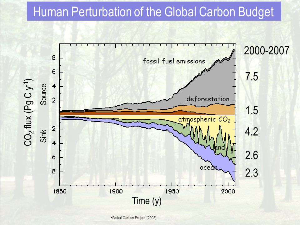 atmospheric CO 2 ocean land fossil fuel emissions deforestation 7.5 1.5 4.2 2.3 2.6 2000-2007 CO 2 flux (Pg C y -1 ) Sink Source Time (y) Human Perturbation of the Global Carbon Budget •Global Carbon Project (2008)