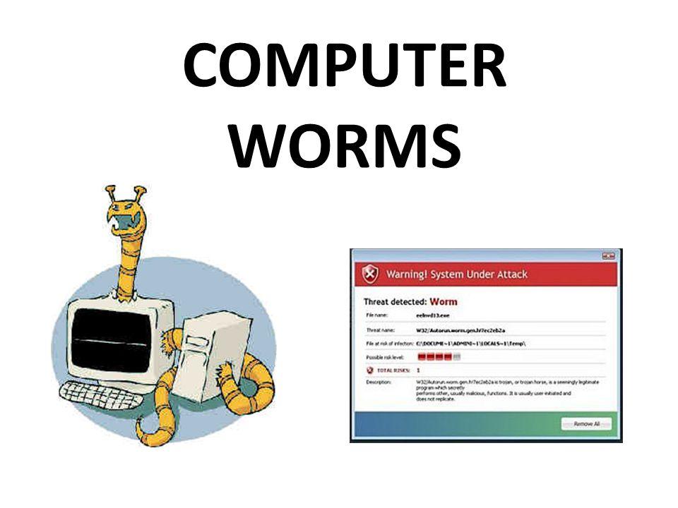 • Τι είναι οι ιοί σκουλήκια ; • Σκουλήκι (worm) είναι ένα κακόβουλο πρόγραμμα που πολλαπλασιάζεται και μεταδίδεται από υπολογιστή σε υπολογιστή.
