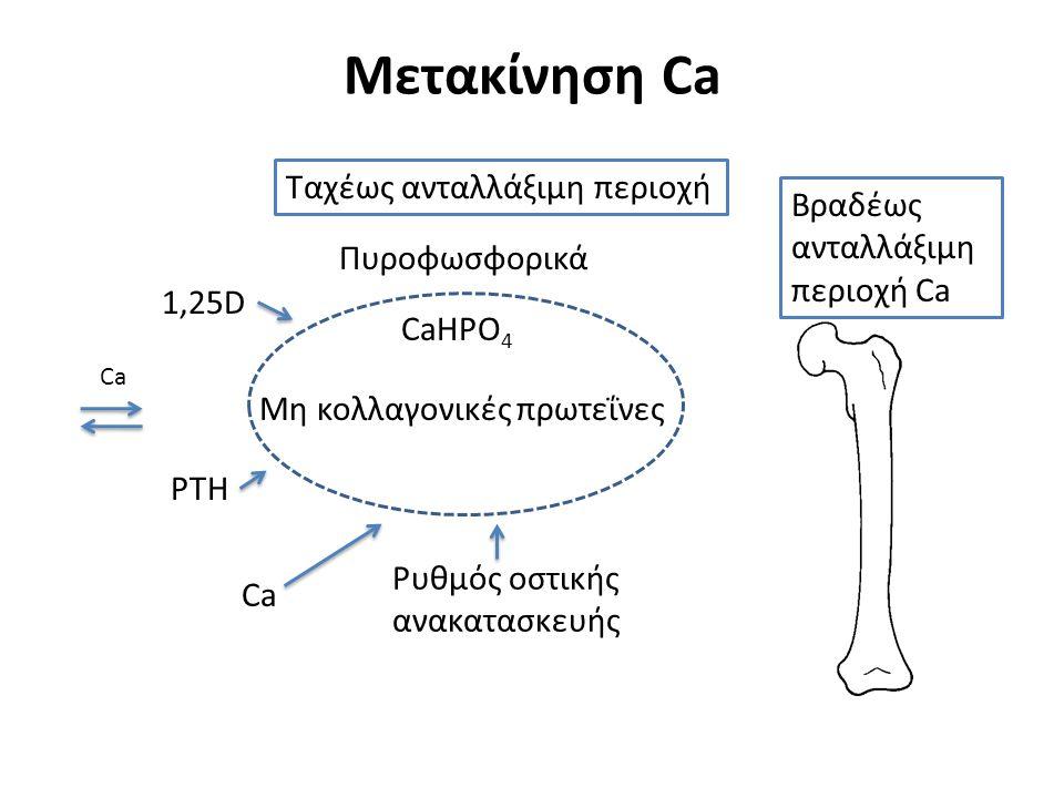 Βραδέως ανταλλάξιμη περιοχή Ca Μετακίνηση Ca CaHPO 4 Μη κολλαγονικές πρωτεΐνες 1,25D PTH Ca Πυροφωσφορικά Ρυθμός οστικής ανακατασκευής Ca Ταχέως ανταλλάξιμη περιοχή