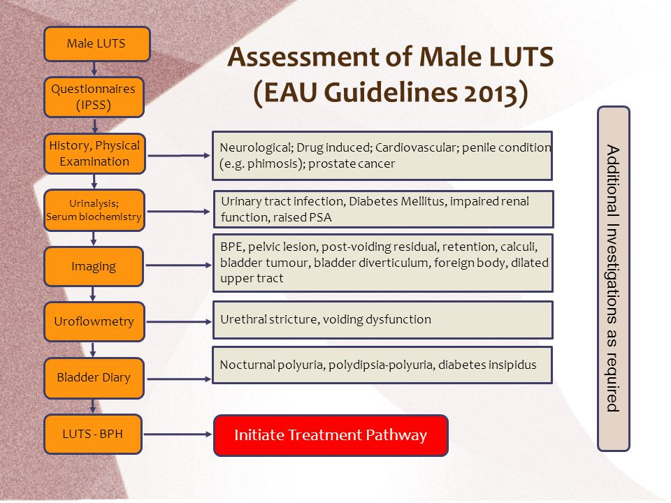 Male LUTS Questionnaires (IPSS) History, Physical Examination Urinalysis; Serum biochemistry Imaging Uroflowmetry Bladder Diary LUTS - BPH Neurologica