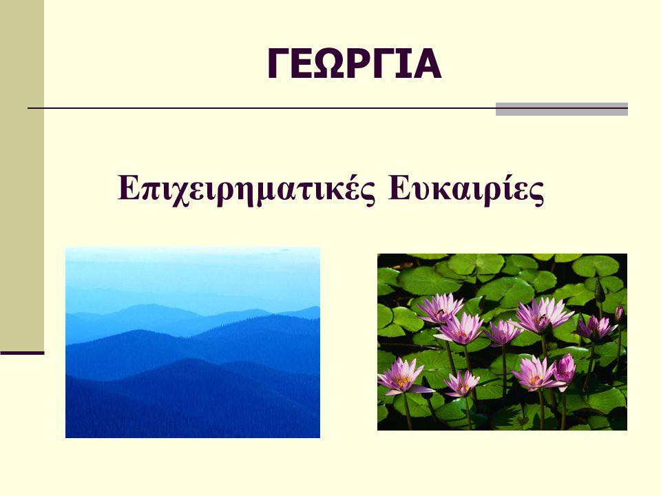 Περιεχόμενα  Γεωγραφικά στοιχεία  Εσωτερικά προβλήματα και εξωτερικές σχέσεις  Βασικά οικονομικά στοιχεία  Ιδιαιτερότητες της χώρας – αγοράς  Θετικές ενδείξεις στην αγορά  Βασικά προϊόντα στις εισαγωγές της Γεωργίας ( + διάγραμμα)  Βασικοί προμηθευτές  Επενδυτικό κλίμα  Άμεσες ξένες επενδύσεις 2007  Σημαντικές ξένες επενδύσεις στη Γεωργία - Ιδιωτικοποιήσεις