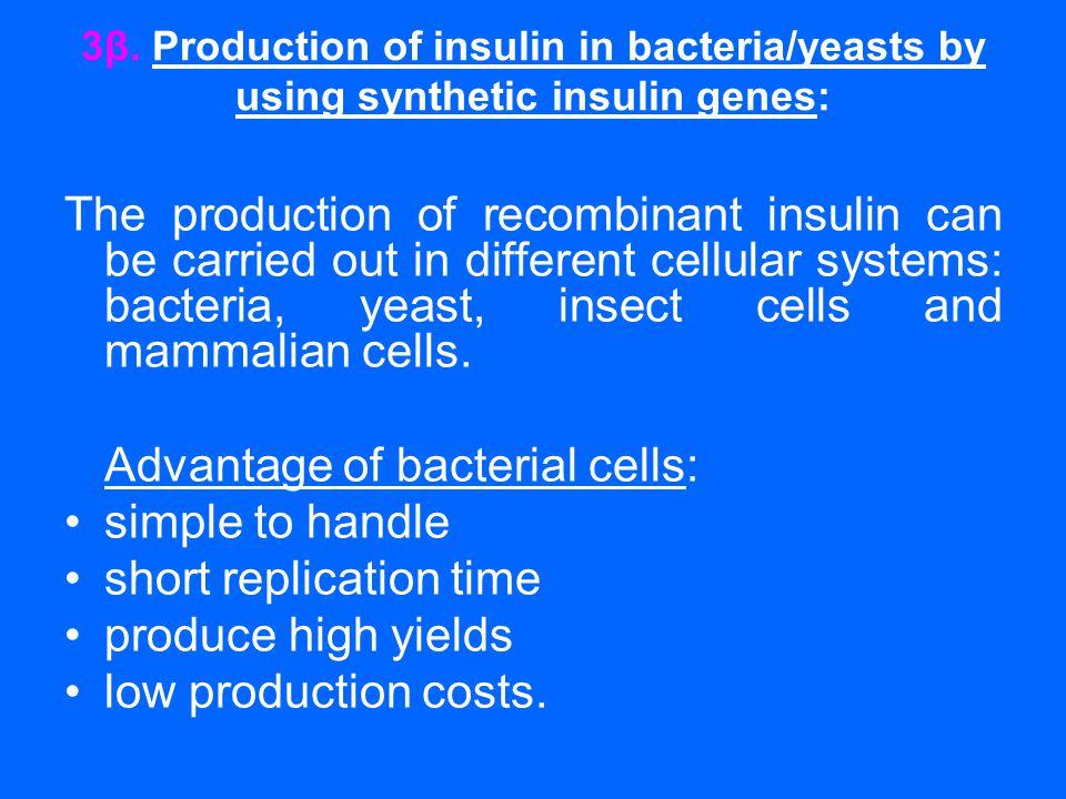 3β. Production of insulin in bacteria/yeasts by using synthetic insulin genes: The production of recombinant insulin can be carried out in different c