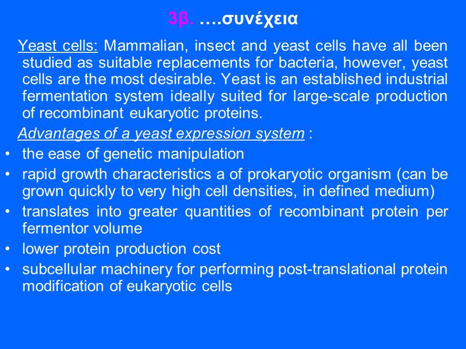 3β. ….συνέχεια Yeast cells: Mammalian, insect and yeast cells have all been studied as suitable replacements for bacteria, however, yeast cells are th