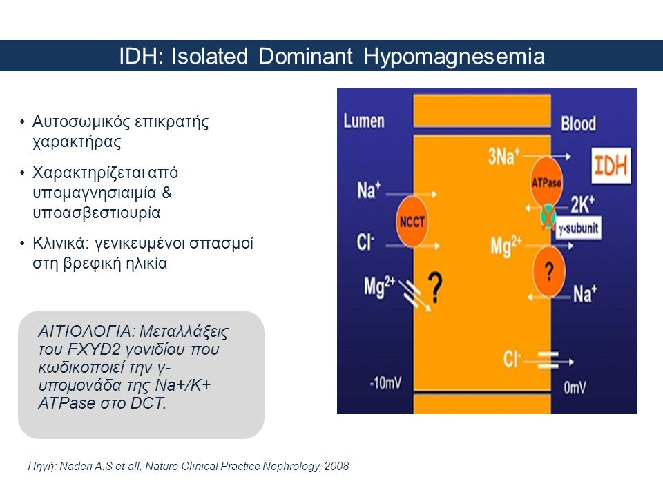 IDH: Isolated Dominant Hypomagnesemia Πηγή: Naderi A.S et all, Nature Clinical Practice Nephrology, 2008 •Αυτοσωμικός επικρατής χαρακτήρας •Χαρακτηρίζ