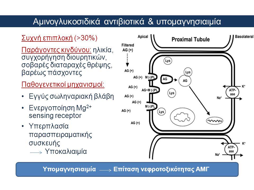 Αμινογλυκοσιδικά αντιβιοτικά & υπομαγνησιαιμία Συχνή επιπλοκή (>30%) Παράγοντες κινδύνου: ηλικία, συγχορήγηση διουρητικών, σοβαρές διαταραχές θρέψης,