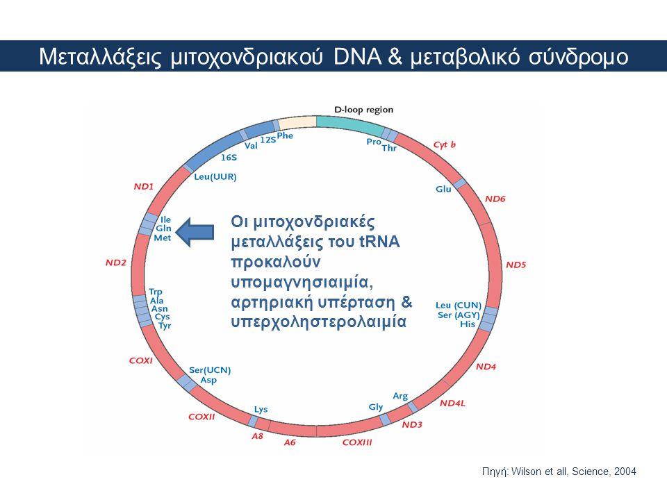 Μεταλλάξεις μιτοχονδριακού DNA & μεταβολικό σύνδρομο Οι μιτοχονδριακές μεταλλάξεις του tRNA προκαλούν υπομαγνησιαιμία, αρτηριακή υπέρταση & υπερχοληστ