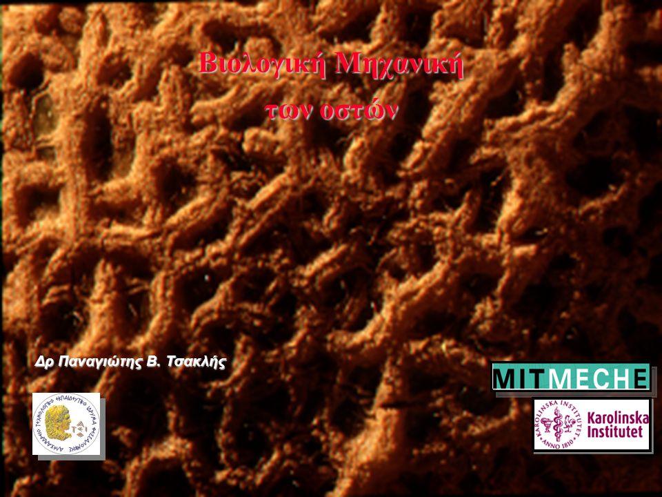 1 Bιολογική Μηχανική των οστών Δρ Παναγιώτης Β. Τσακλής