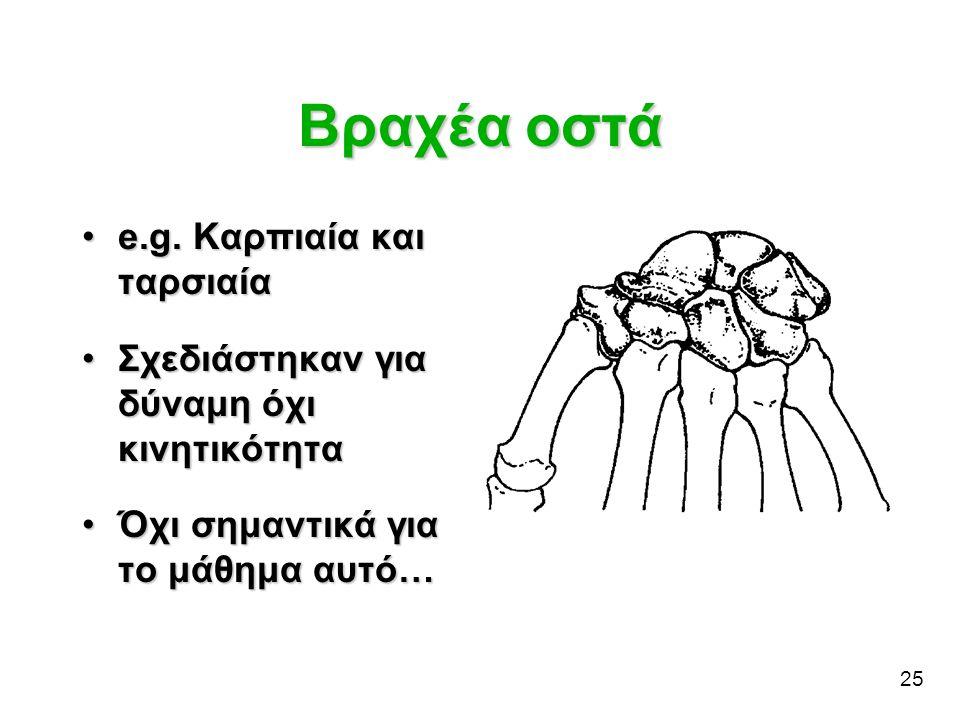 25 Βραχέα οστά •e.g. Καρπιαία και ταρσιαία •Σχεδιάστηκαν για δύναμη όχι κινητικότητα •Όχι σημαντικά για το μάθημα αυτό…
