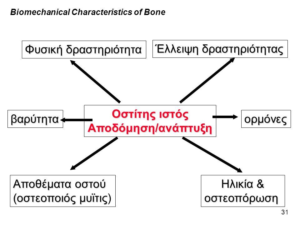 31 Biomechanical Characteristics of Bone Οστίτης ιστός Αποδόμηση/ανάπτυξη Φυσική δραστηριότητα Έλλειψη δραστηριότητας Αποθέματα οστού (οστεοποιός μυϊτ