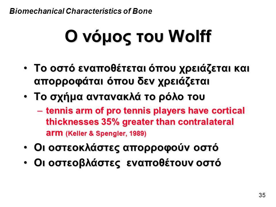 35 Ο νόμος του Wolff •Το οστό εναποθέτεται όπου χρειάζεται και απορροφάται όπου δεν χρειάζεται •Το σχήμα αντανακλά το ρόλο του –tennis arm of pro tenn