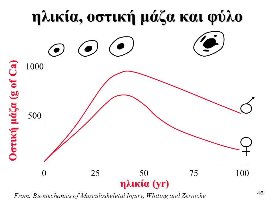 46 ηλικία, οστική μάζα και φύλο From: Biomechanics of Musculoskeletal Injury, Whiting and Zernicke Οστική μάζα (g of Ca) 1000502575 500 1000 ηλικία (y