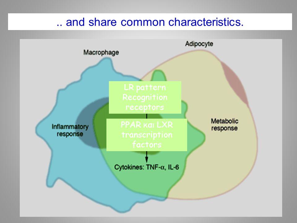 .. and share common characteristics. LR pattern Recognition receptors PPAR και LXR transcription factors