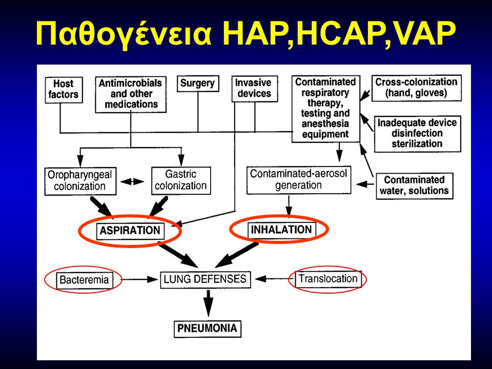 Παθογένεια HAP,HCAP,VAP