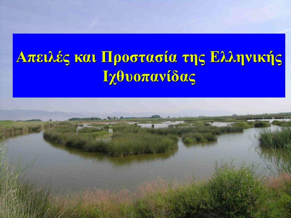 34 Απειλές και Προστασία της Ελληνικής Ιχθυοπανίδας
