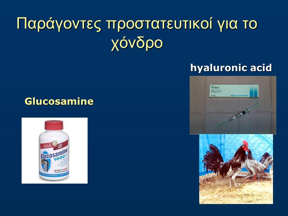 Παράγοντες προστατευτικοί για το χόνδρο Glucosamine hyaluronic acid