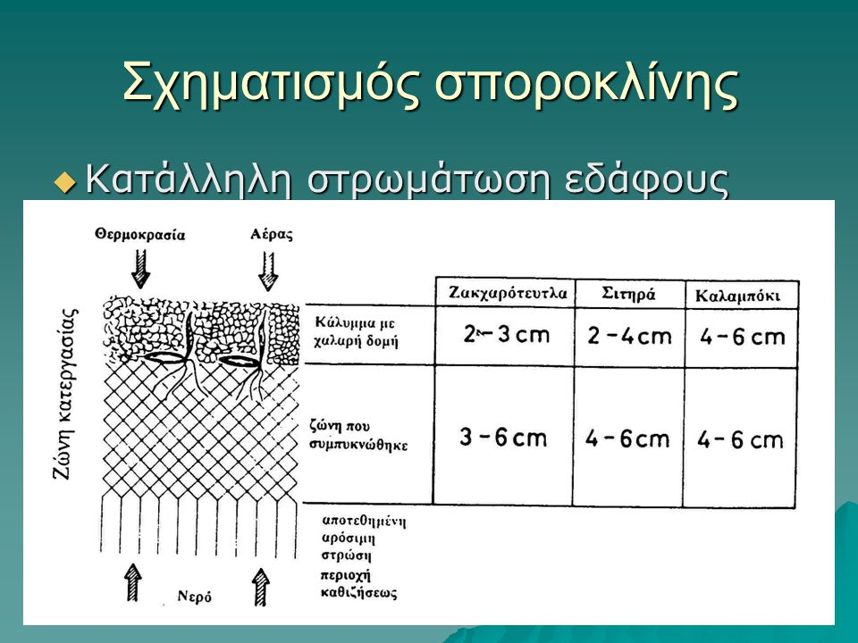 Σχηματισμός σποροκλίνης  Κατάλληλη στρωμάτωση εδάφους