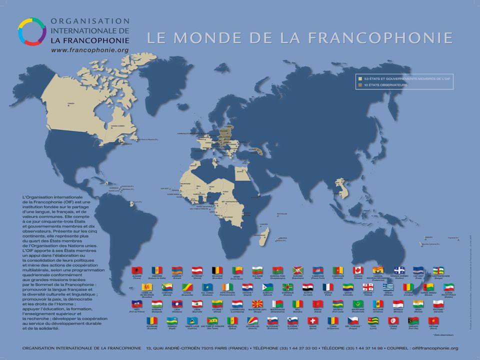 ΓΛΩΣΣΑ ΕΡΓΑΣΙΑΣ ΣΕ ΠΑΓΚΟΣΜΙΟ ΕΠΙΠΕΔΟ Μαζί με τα αγγλικά είναι η πιο χρησιμοποιούμενη γλώσσα στους διεθνείς οργανισμούς.