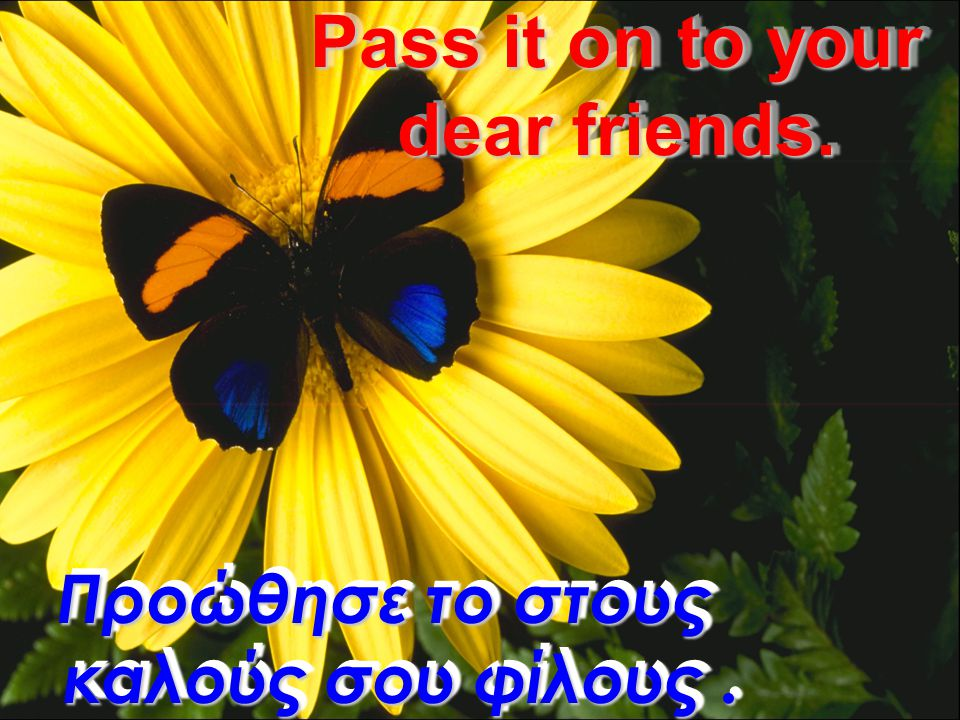 Friendship is like wine, it gets better as it grows older. Οι φίλοι είναι σαν το παλιό κρασί... γίνονται καλύτεροι όσο περνάει ο καιρός.