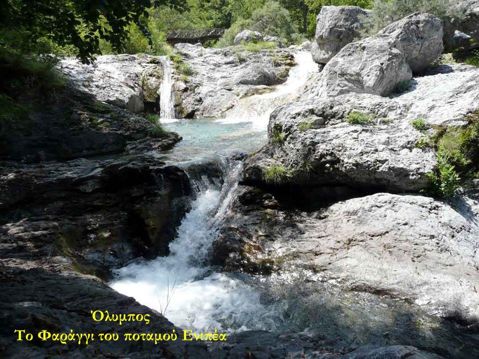 Όλυμπος Το Φαράγγι του ποταμού Ενιπέα