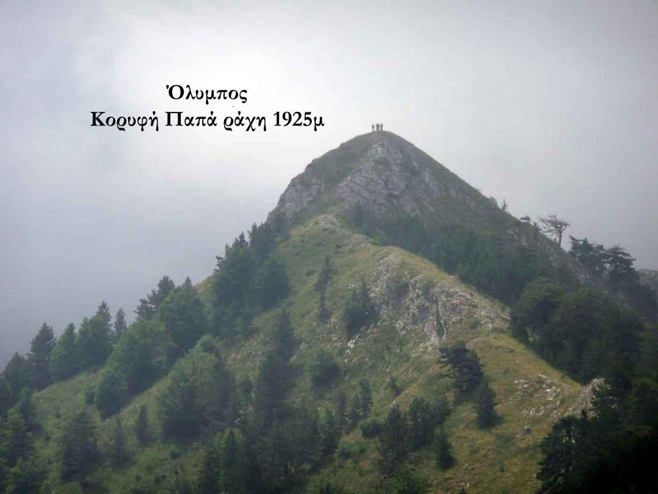 Κορυφή Παπά ράχη 1925μ..