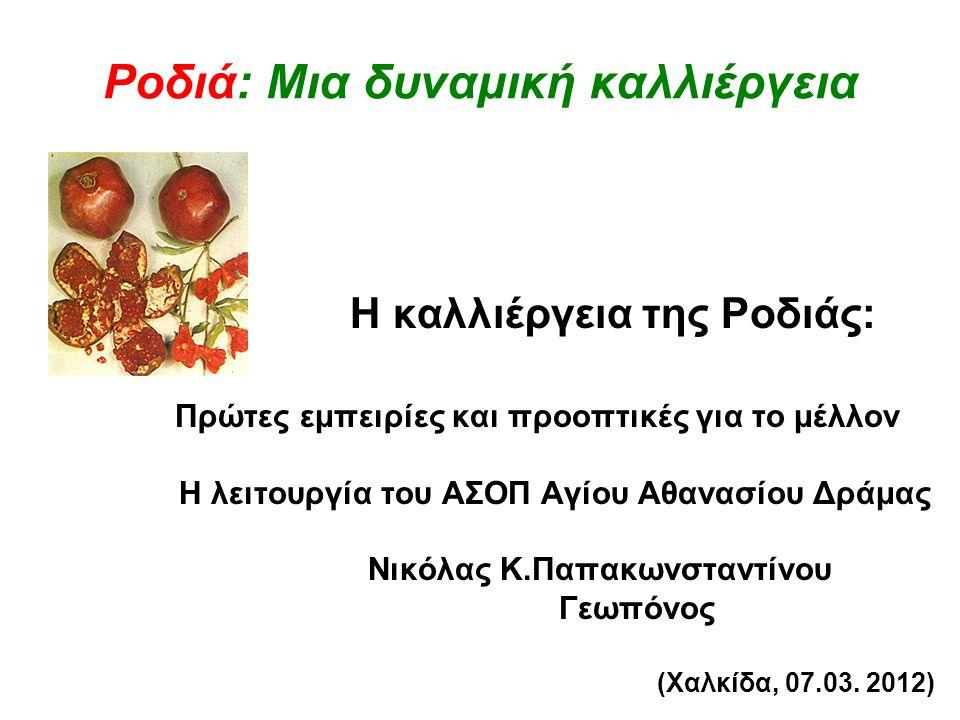 Ροδιά: Μια δυναμική καλλιέργεια Η καλλιέργεια της Ροδιάς: Πρώτες εμπειρίες και προοπτικές για το μέλλον Η λειτουργία του ΑΣΟΠ Αγίου Αθανασίου Δράμας Ν