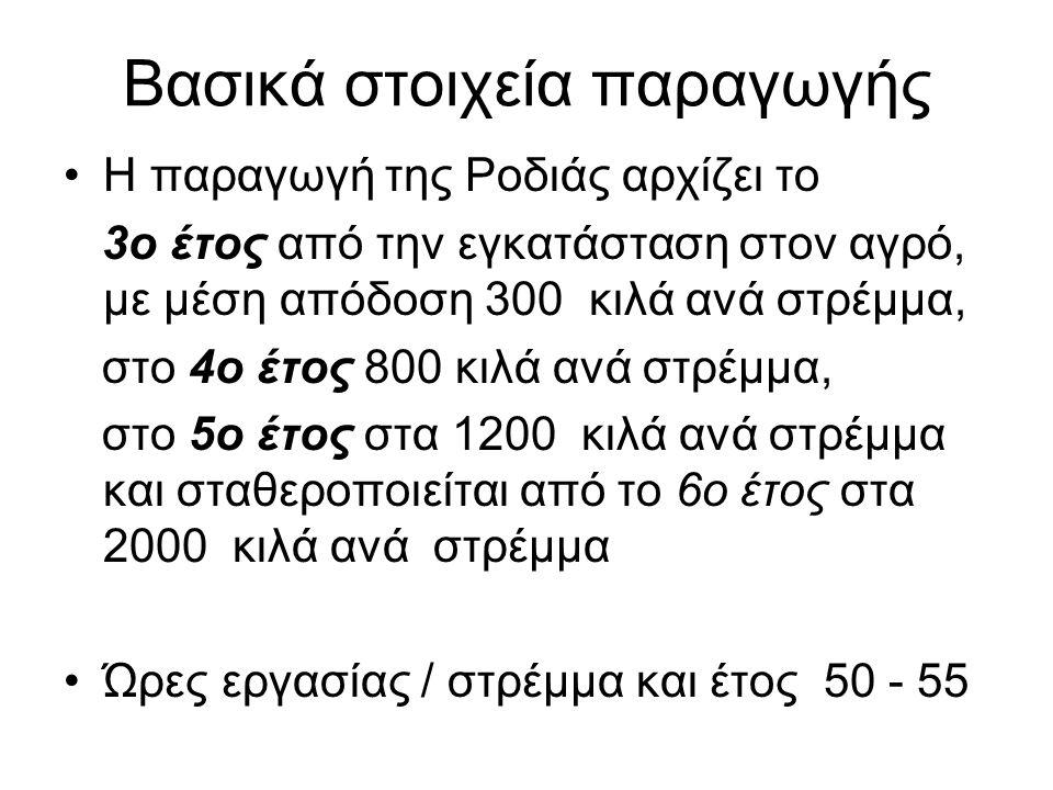 Βασικά στοιχεία παραγωγής •Η παραγωγή της Ροδιάς αρχίζει το 3ο έτος από την εγκατάσταση στον αγρό, με μέση απόδοση 300 κιλά ανά στρέμμα, στο 4ο έτος 8
