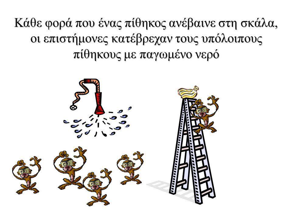 Μία ομάδα επιστημόνων τοποθέτησε 5 πιθήκους σε ένα κλουβί και στη μέση έβαλε μία σκάλα με μερικές μπανάνες στην κορυφή