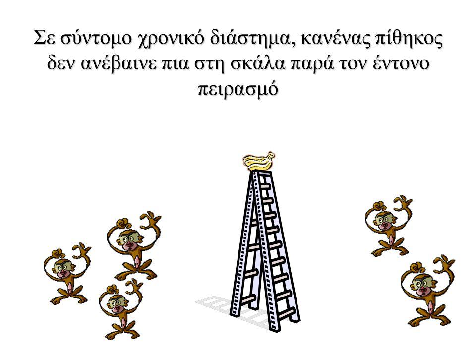 Μετά από λίγο κάθε φορά που ένας πίθηκος ανέβαινε στη σκάλα, οι υπόλοιποι ορμούσαν και τον ξυλοκοπούσαν