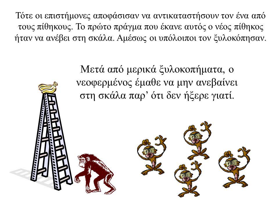 Σε σύντομο χρονικό διάστημα, κανένας πίθηκος δεν ανέβαινε πια στη σκάλα παρά τον έντονο πειρασμό