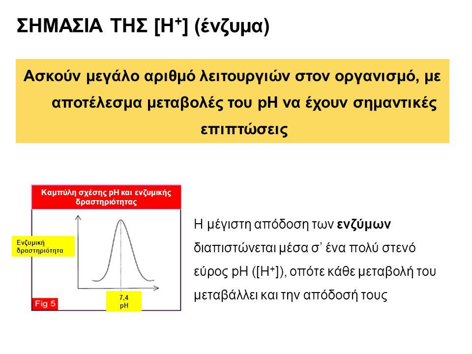 ΣΗΜΑΣΙΑ ΤΗΣ [Η + ] (ένζυμα) Ασκούν μεγάλο αριθμό λειτουργιών στον οργανισμό, με αποτέλεσμα μεταβολές του pH να έχουν σημαντικές επιπτώσεις Ενζυμική δρ