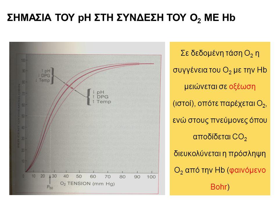 ΣΗΜΑΣΙΑ ΤΟΥ pH ΣΤΗ ΣΥΝΔΕΣΗ ΤΟΥ Ο 2 ΜΕ Hb Σε δεδομένη τάση Ο 2 η συγγένεια του Ο 2 με την Hb μειώνεται σε οξέωση (ιστοί), οπότε παρέχεται Ο 2, ενώ στου