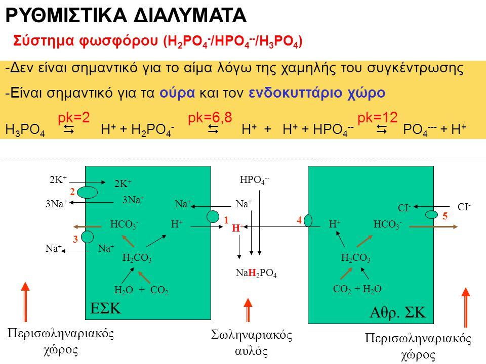 ΡΥΘΜΙΣΤΙΚΑ ΔΙΑΛΥΜΑΤΑ Σύστημα φωσφόρου (H 2 PO 4 - /HPO 4 -- /H 3 PO 4 ) -Δεν είναι σημαντικό για το αίμα λόγω της χαμηλής του συγκέντρωσης -Είναι σημα