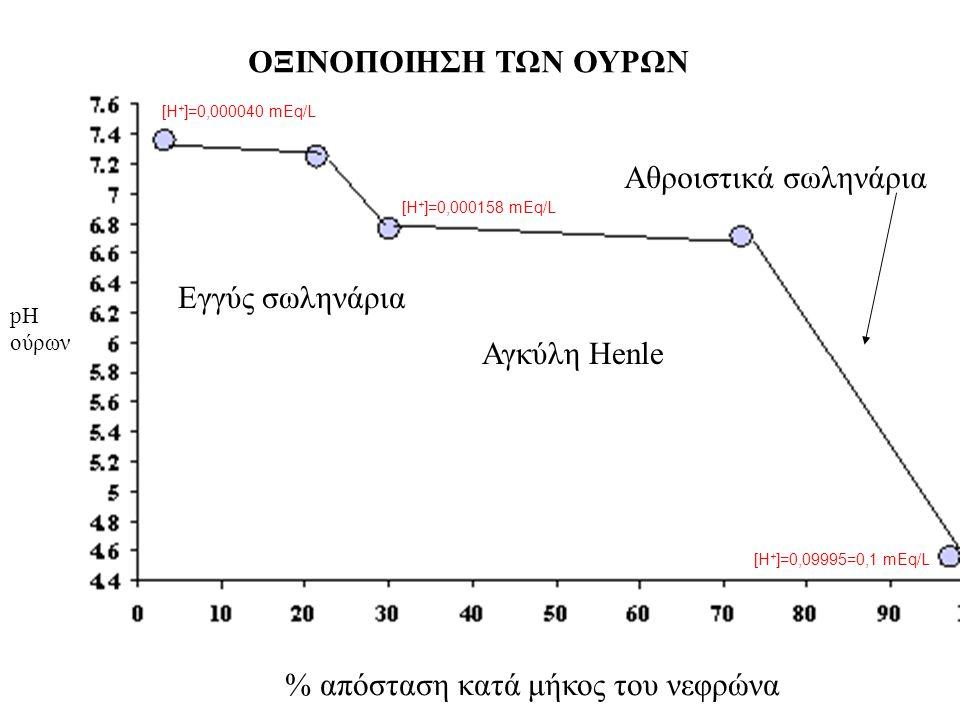 ΟΞΙΝΟΠΟΙΗΣΗ ΤΩΝ ΟΥΡΩΝ % απόσταση κατά μήκος του νεφρώνα pH ούρων Εγγύς σωληνάρια Αγκύλη Henle Αθροιστικά σωληνάρια [Η + ]=0,000040 mEq/L [Η + ]=0,0999