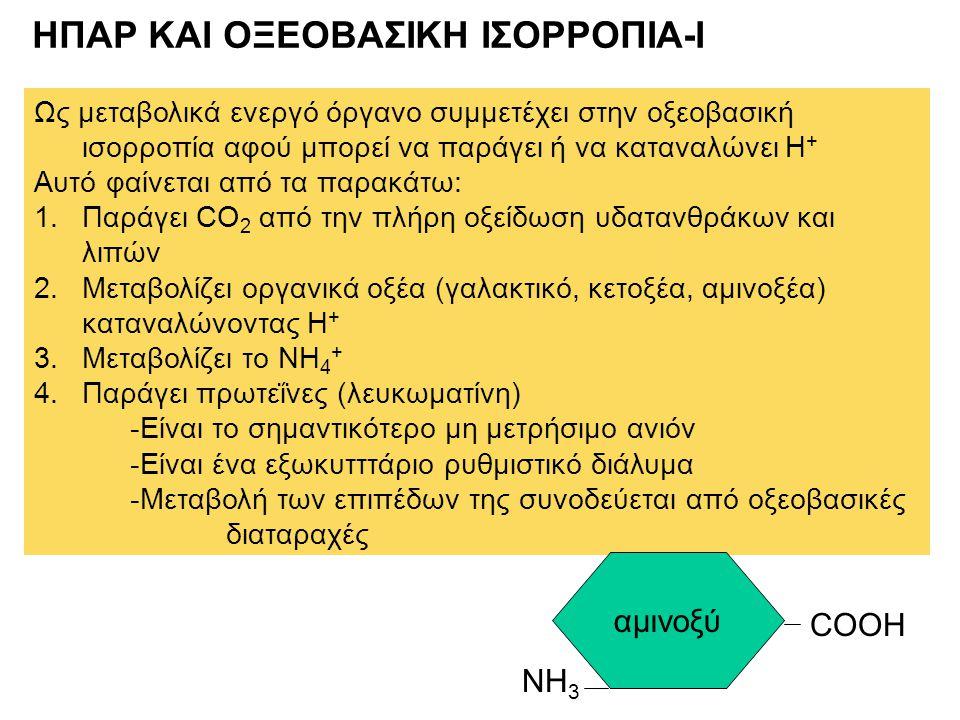 ΗΠΑΡ ΚΑΙ ΟΞΕΟΒΑΣΙΚΗ ΙΣΟΡΡΟΠΙΑ-Ι Ως μεταβολικά ενεργό όργανο συμμετέχει στην οξεοβασική ισορροπία αφού μπορεί να παράγει ή να καταναλώνει Η + Αυτό φαίν