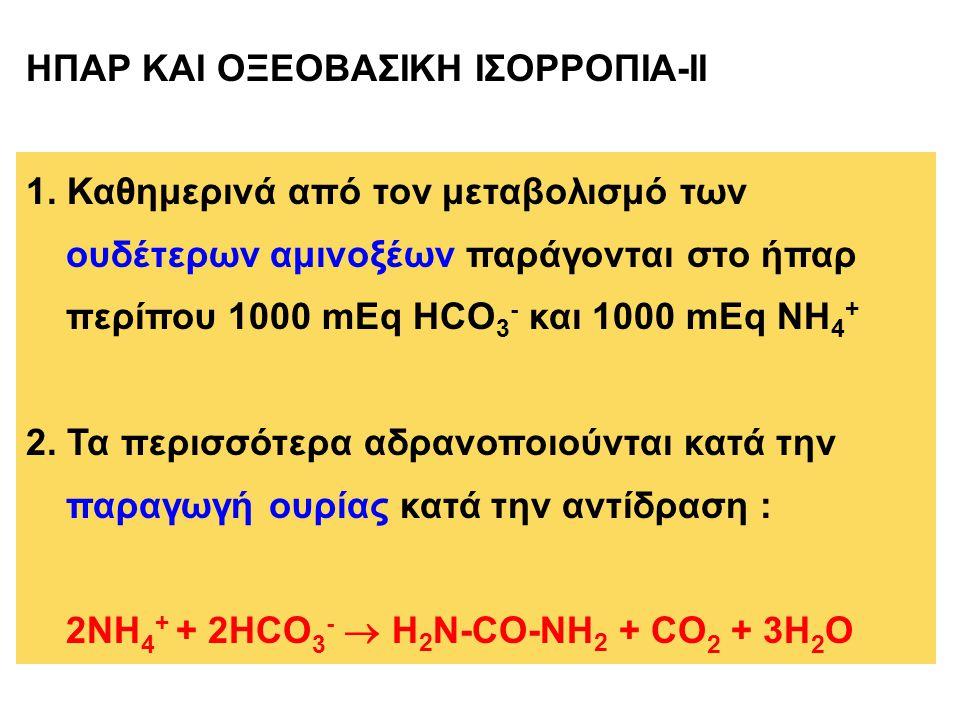 1. Καθημερινά από τον μεταβολισμό των ουδέτερων αμινοξέων παράγονται στο ήπαρ περίπου 1000 mEq HCO 3 - και 1000 mEq NH 4 + 2. Τα περισσότερα αδρανοποι