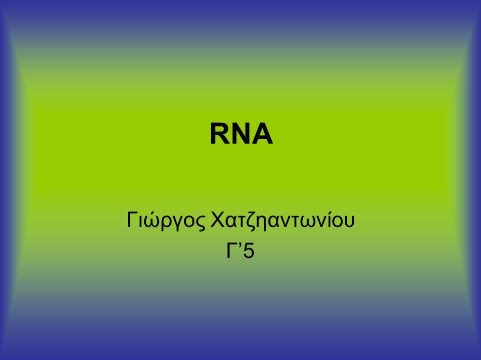 RNA Γιώργος Χατζηαντωνίου Γ'5